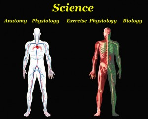 What is an Exercise Physiologist