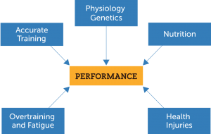 Exercise Physiology Factors
